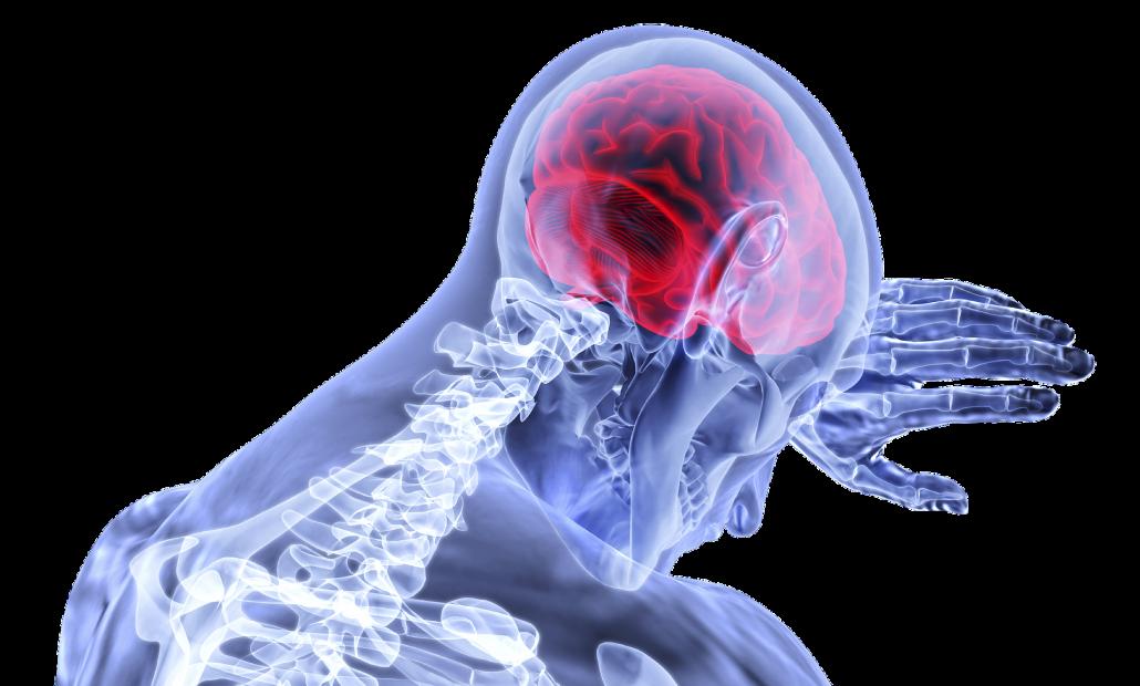 LK Salud. Rehabilitación neurológica